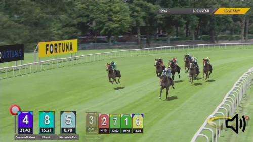 Sporturile virtuale curse de cai