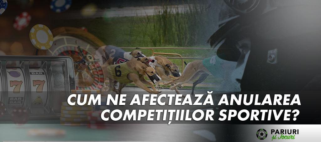 Pariuri Esporturi Sporturi Virtuale si Casino