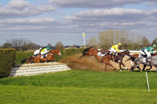 Curse de cai - curse cu sărituri